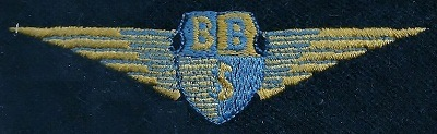 Blue Bus Service Fleetname Wings
